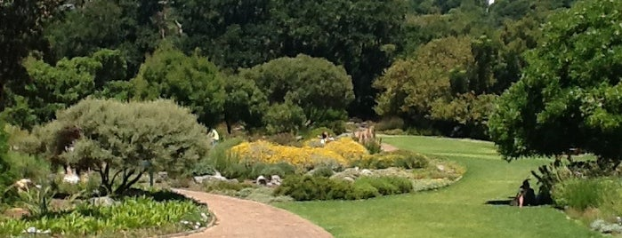 Kirstenbosch Botanical Gardens is one of Go Ahead, Be A Tourist.