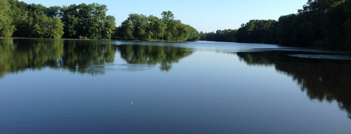 Smithville Lake is one of The Great Outdoors.