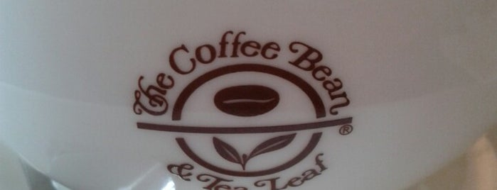 The Coffee Bean & Tea Leaf is one of My Doha..