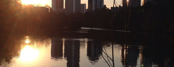Piedmont Park is one of Spring Break in Atlanta.