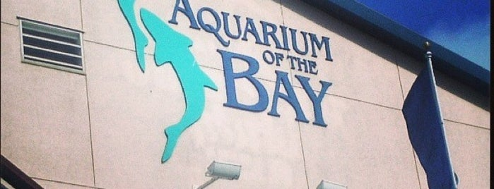 Aquarium of the Bay is one of San Francisco To Do List.