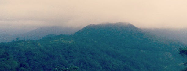 Ponmudi Hill Top is one of Guide to Trivandrum's best spots.