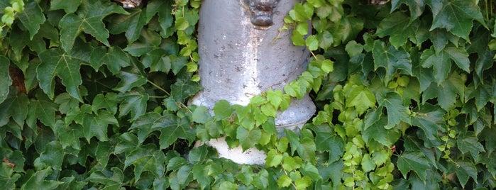 Fontana di Via San Teodoro is one of 101 cose da fare a Roma almeno 1 volta nella vita.