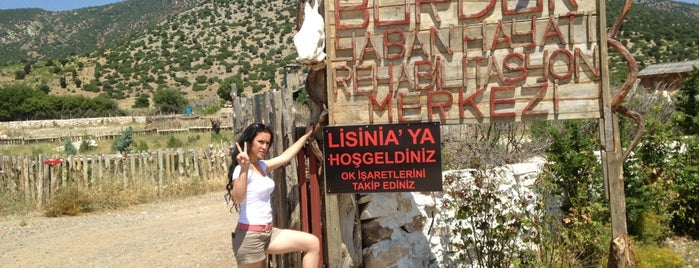 Lisinia - Burdur Yaban Hayatı Rehabilitasyon Merkezi is one of to go & eat.