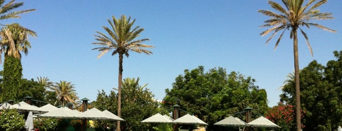 Belconti Resort Hotel Belek is one of AntaLya :)).