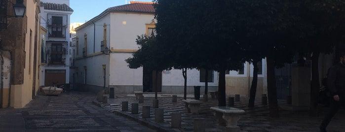 plaza angel torres is one of Cordoba Vegan.