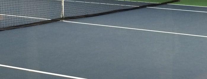 Galleria Tennis U0026 Athletic Club Is One Of Houstonu0027s Best Indoor Tennis  Courts.