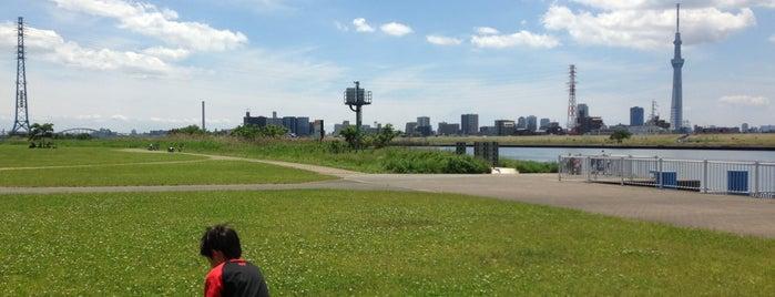 堀切水辺公園 is one of サイクリング.