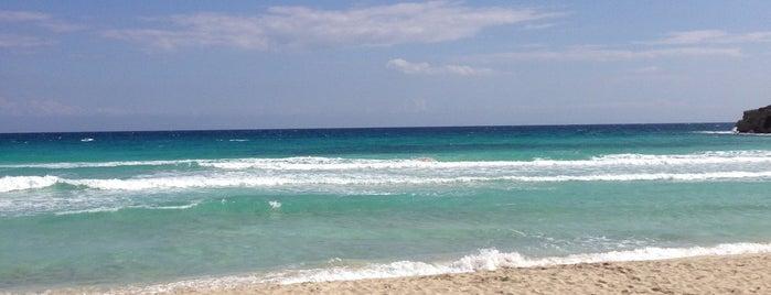 Пляж Нисси is one of Cyprus beach.