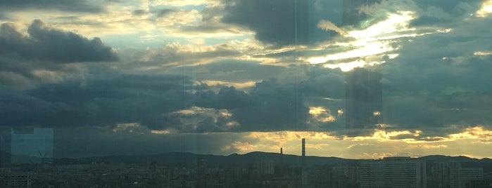 Monkey Sky Club is one of Sofia.