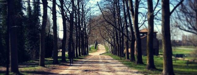 Mura Viale Degli Angeli is one of LOCAL.