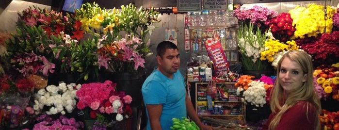 Florería Carlitos is one of Df.