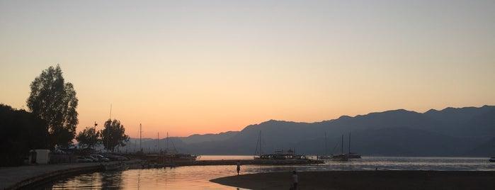 Andriake Cafe&Beach is one of Kamp Alanları.