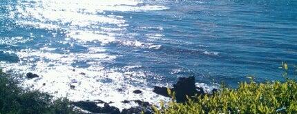 Little Corona Beach is one of Beach.