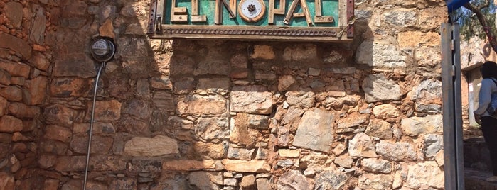 El Nopal Cósmico is one of Top 10 favorites places in San Luis Potosí, Mexico.