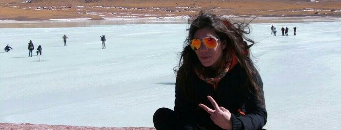 Salar de Atacama is one of Atacama.