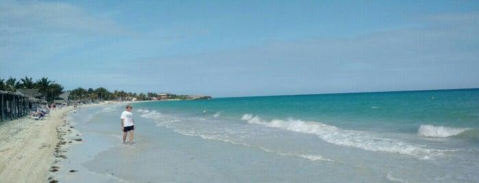Mojito Beach is one of Kuba.