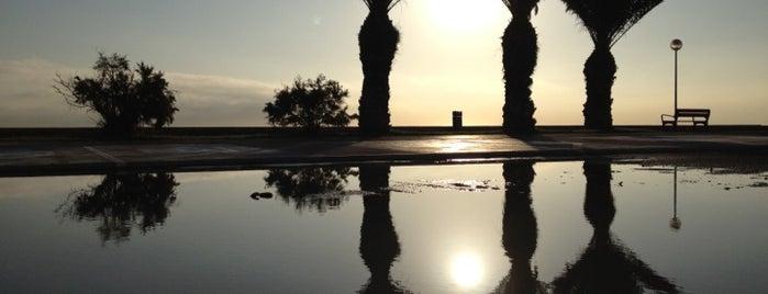 Playa de San Juan is one of Alicante #4sqCities.