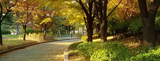 Yeouido Park is one of Travel Guide to Seoul.