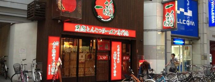 Ichiran is one of ラーメン.