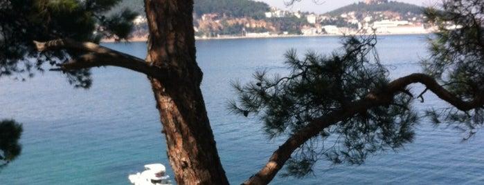 Büyükada Tepesi is one of İstanbul.