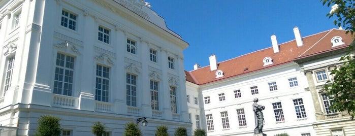 Josephinum: Museum des Instituts für Geschichte der Medizin is one of Lieblingsplätze Wien.