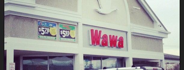 Wawa is one of Favorite Food.