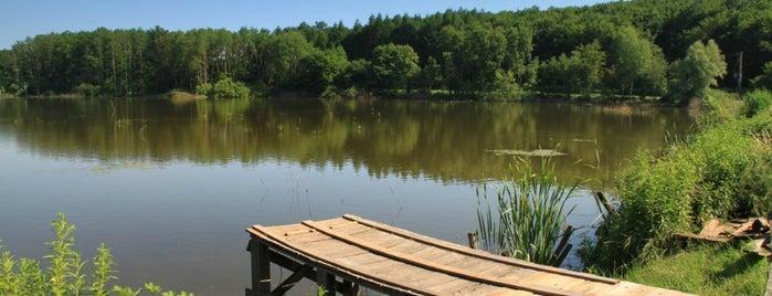 Ágneslaki Arborétum Vadászház is one of countryside • hungary • sleep.