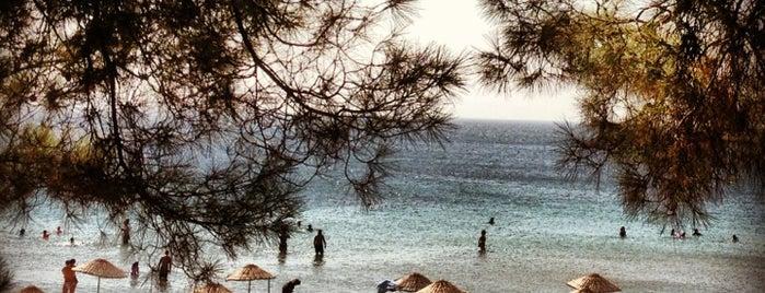 Kabatepe Plaj is one of Kamp.