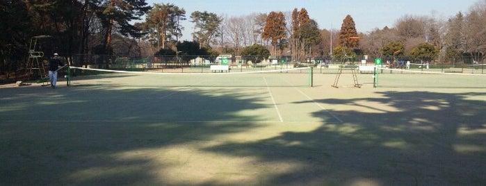 井頭公園(テニスコート) is one of Tennis Court relates on me.