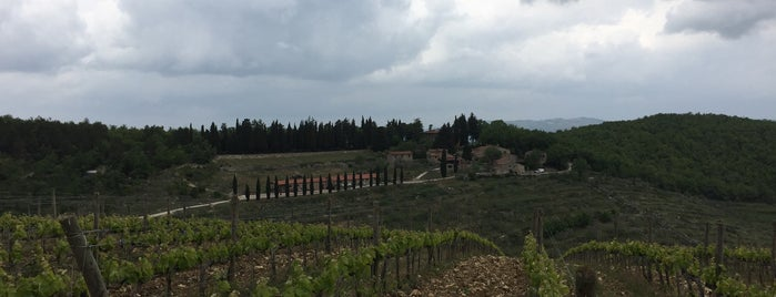 Az Agr Querceto di Castellina is one of Chianti Classico Producers.
