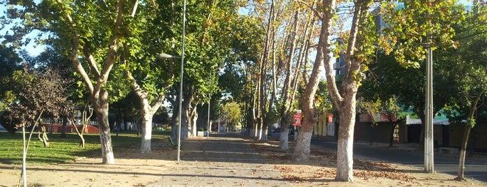 Plaza Las Heras Barrio Norte Talca is one of fefe.