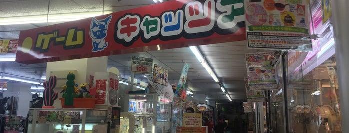 キャッツアイ 西葛西店 is one of beatmania IIDX 設置店舗.