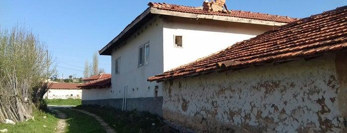 Çifteoluklar is one of Kütahya | Merkez Köyler.
