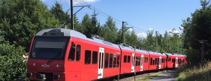 SZU Uitikon Waldegg is one of Bahnhöfe.