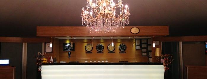 AES hotel is one of Turkiye Hotels.