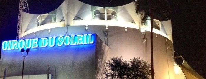 La Nouba by Cirque du Soleil is one of Disney Springs.