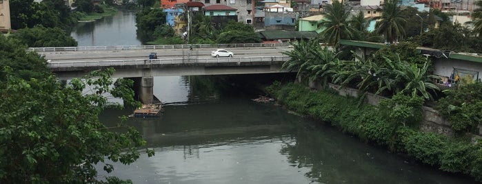 Pasig River is one of Manila.