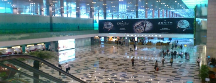 Terminal 3 Arrival Hall is one of Singapore.