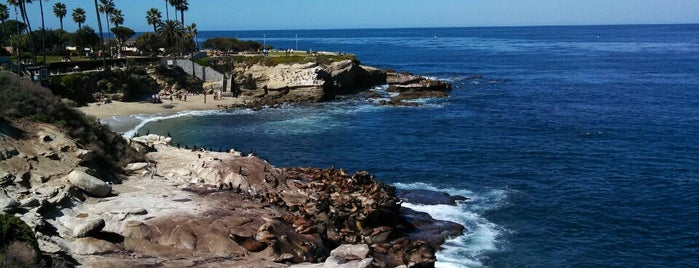 La Jolla Cove is one of The 50 Most Popular Beaches in the U.S..