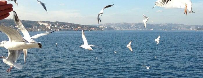 İBB Beykoz Sahil Sosyal Tesisleri is one of My turkey.