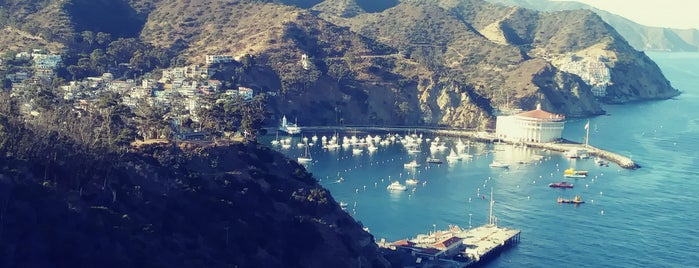 Avalon Harbor is one of Recommendations from you to me 4square and 4cast.