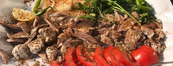 Yayla Söğüş is one of bursa.