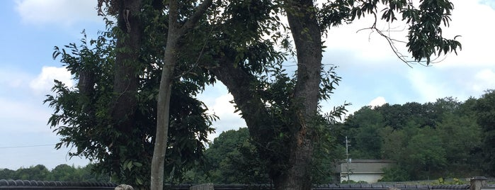 竹中半兵衛の墓 is one of 中世・近世の史跡.