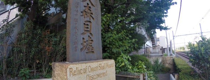 大森貝塚(大森貝墟の碑) is one of 近現代.