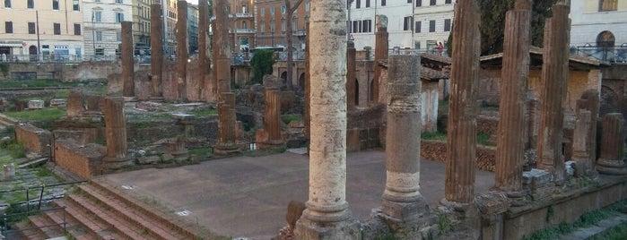 Largo di Torre Argentina is one of 101 cose da fare a Roma almeno 1 volta nella vita.