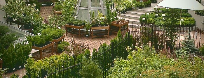 The Apothecaries' Garden is one of Москва любимое.