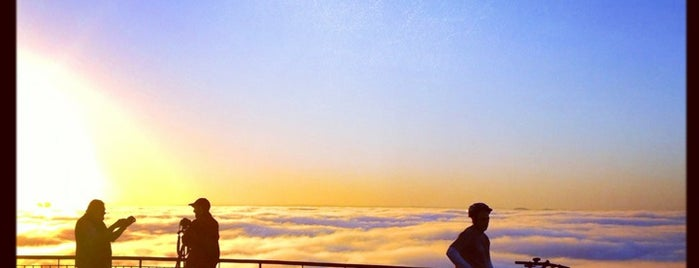 Mount Coot-tha Lookout is one of East Coast, Australia.