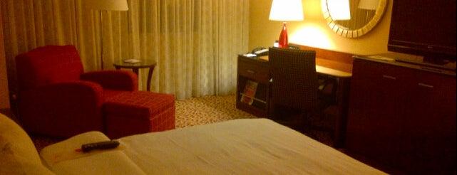 Long Island Marriott is one of Hotels.