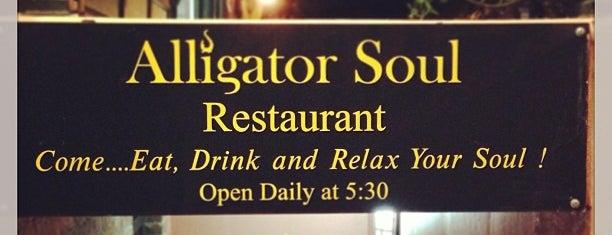 Alligator Soul is one of Savannah.